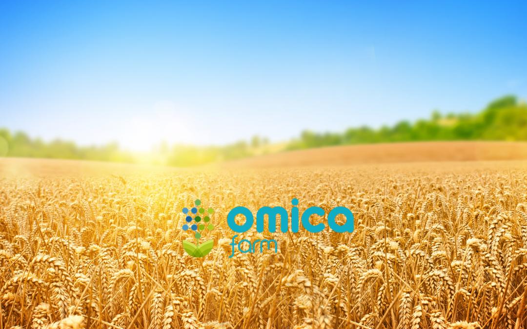 Perchè innovare in agricoltura?