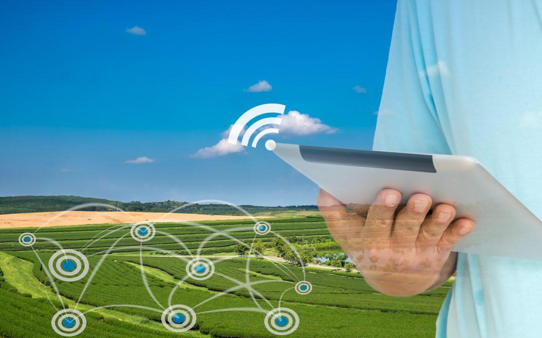 L'Internet of Things in agricoltura, è tutta la qui la novità in agricoltura digitale?